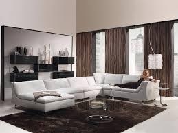 houzz living room furniture. stunning small living room ideas houzz greenvirals style furniture u