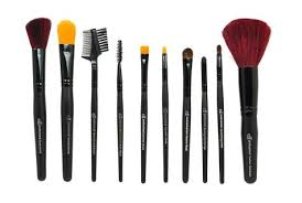 elf brushes. e.l.f. 10 pcs brush collection limited edition elf brushes