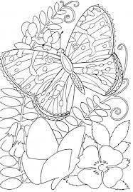 Small Picture Hard butterflies Coloring Pages for Adults to print Butterfly