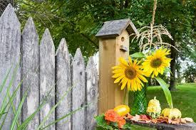 6 Fall Gardening Trends Seen On Pinterest  Garden ClubFall Gardening