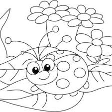 Small Picture Beautiful Lady Bug Coloring Page Beautiful Lady Bug Coloring Page