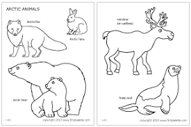 Small Picture Beautiful Design Polar Animal Coloring Pages Polar Arctic Animals