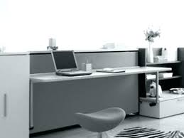 home office cool office. Cool Office Desk Plants Large Size Of Home Easy On The Eye .