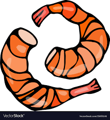 cooked shrimp clip art.  Clip Inside Cooked Shrimp Clip Art O