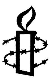 Afbeeldingsresultaat voor amnesty