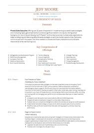 Performance Profile Resumes Sales Cv Examples Templates Visualcv