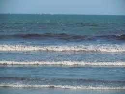 South Shore Beach Little Compton Tide Chart Your Tiverton Little Compton Beach Passes For Summer 2013