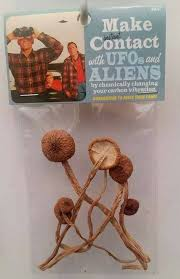 make instant contact ufos and aliens shrooms make instant contact ufos and aliens