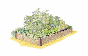 this high yield vegetable garden plan enables gardeners to grow more than 50 pounds of produce