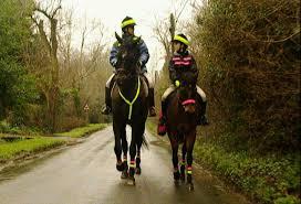 Image result for hi viz equestrian