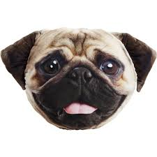 pet faces pug velour cushion