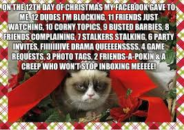 Christmas is an excited event celebrated every year on 25th december. Grumpy Cat Memes 12 Days Of Christmas Grumpy Cat