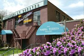 Musical Sign Of The Times Review Of Norma Terris Theatre