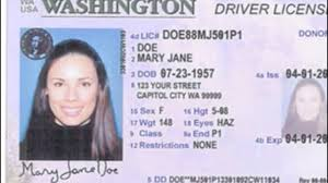 Check Of My Wa Il Drivers Online License