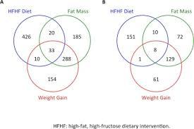 Venn Diagram Mass And Weight Weight And Mass Venn Diagram Rome Fontanacountryinn Com