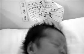 photo essay korean adoption