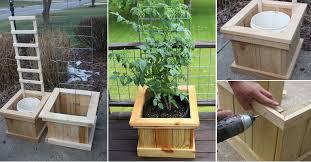Small Picture How To Build Garden Grow Boxes Home Design Garden