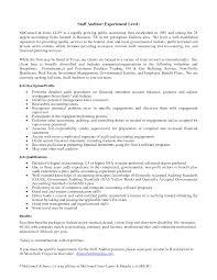 Internal Auditor Resume Objective Staff Auditor Resume Therpgmovie 16