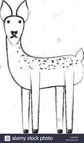 Animal Icon Cartoon Animal Icon Stock Vector Art Illustration Vector