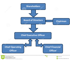 Company Org Chart Corporate Structure Business Org Chart Stock Illustration