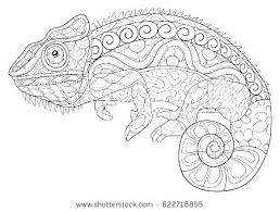 Chameleon Marker Coloring Pages Master Coloring Pages