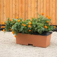 earthbox container gardening system