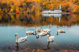 """Image result for fall colors """"long island"""""""