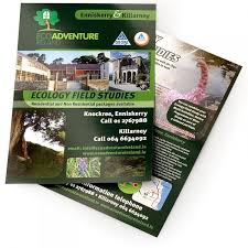 Make Free Flyers To Print Print A4 Flyers Full Colour Cmyk Printing Free Delivery