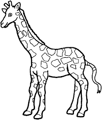 Small Picture zoo animal coloring pictures wwwmindsandvinescom