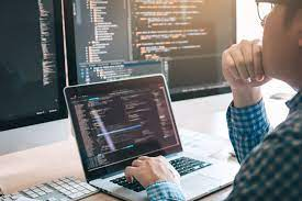What Does a Software Development Company do?