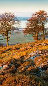 autumn mountains backgrounds. Autumn Meadow Mountains Backgrounds