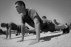 Image result for What will 20 pushups a day do?