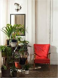 home decorating with plants, red chair