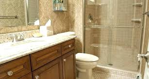 Ideas To Remodel A Bathroom Best Inspiration Design