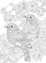 Realistic Bird Coloring Pages Beautiful Coloring Pages For Adults