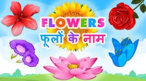 flowers name in hindi english फ ल