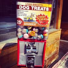Dog Park Vending Machines Unique 48 Best Dog Park Images On Pinterest Dog Playground Dog Park And