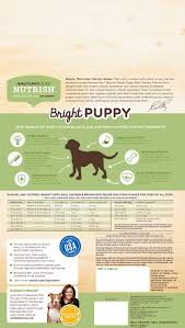 Rachael Ray Nutrish Bright Natural Real Chicken Brown Rice Puppy Recipe Dry Dog Food 14 Lb Bag