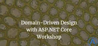 domain driven design with asp net core