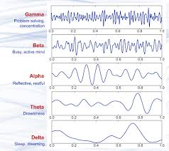 Brain Waves Frequency Chart Brain Waves An Overview Sciencedirect Topics