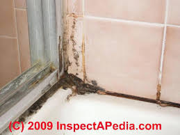 bathroom mold removal products. Bathroom Mold Cleaner Clean Up Tile Grout Joints Remove Prevent Future Growth In Bathrooms Black Removal Products