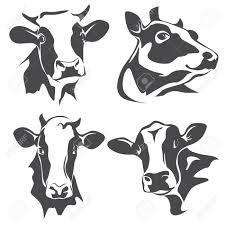 Vache Noir Et Blanc Banque D Images Vecteurs Et Illustrations