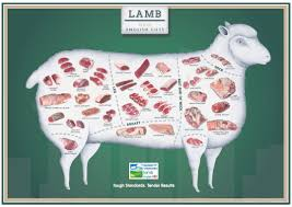 Cuts Of Lamb Chart Pin On Wheres The Meat