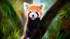 Desktop wallpaper cute, red panda, art ...