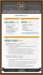 Professional Resume Services Online 2017 Careerperfect Best