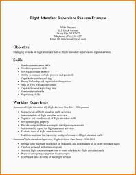 airline resume format 7 flight attendant resume no experience invoice sample resume