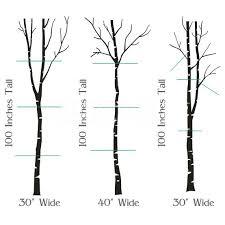 birch tree silhouette wallpaper