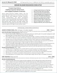 Sample Hr Professional Consultant Resume Business Consultant Resume Thrifdecorblog Com