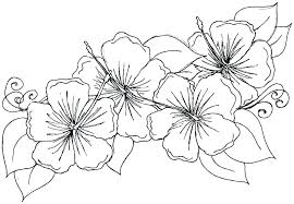 Spring Flowers Free Printable Coloring Pages Flower For Toddlers