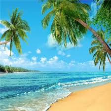 summer background 125 best beach summer backdrop images on pinterest photography